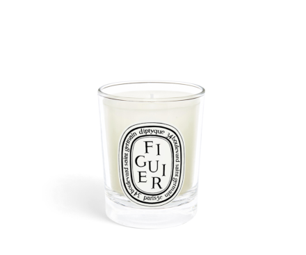 Figuier / Fig Tree Small Candle