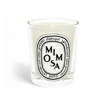 Mimosa candle